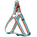 Harnais baudrier Bobby pour chien Surf turquoise